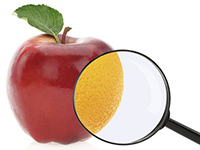 Detecting food fraus with FT-NIR spectroscopy
